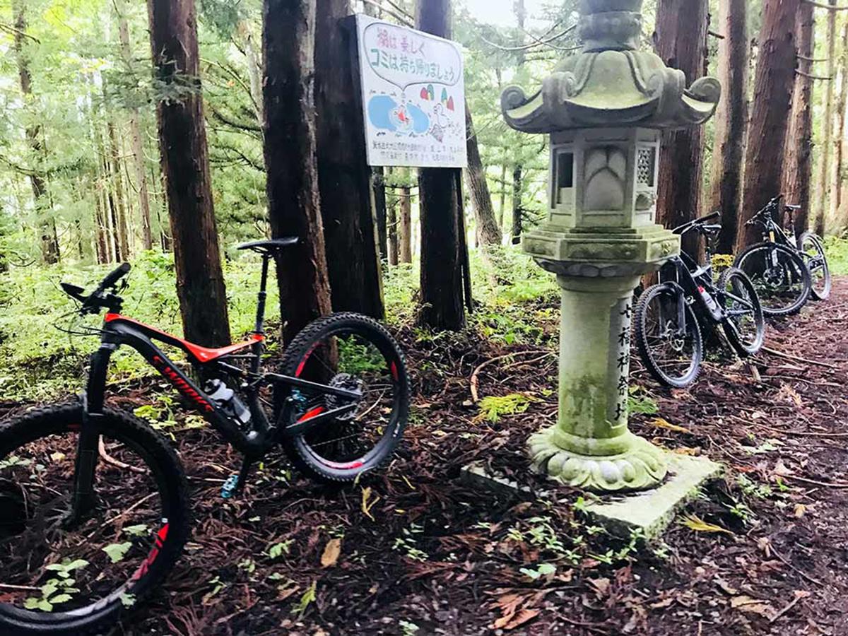 NozawaOnsen-mountain-bike-trails-guided-trip-3.jpg
