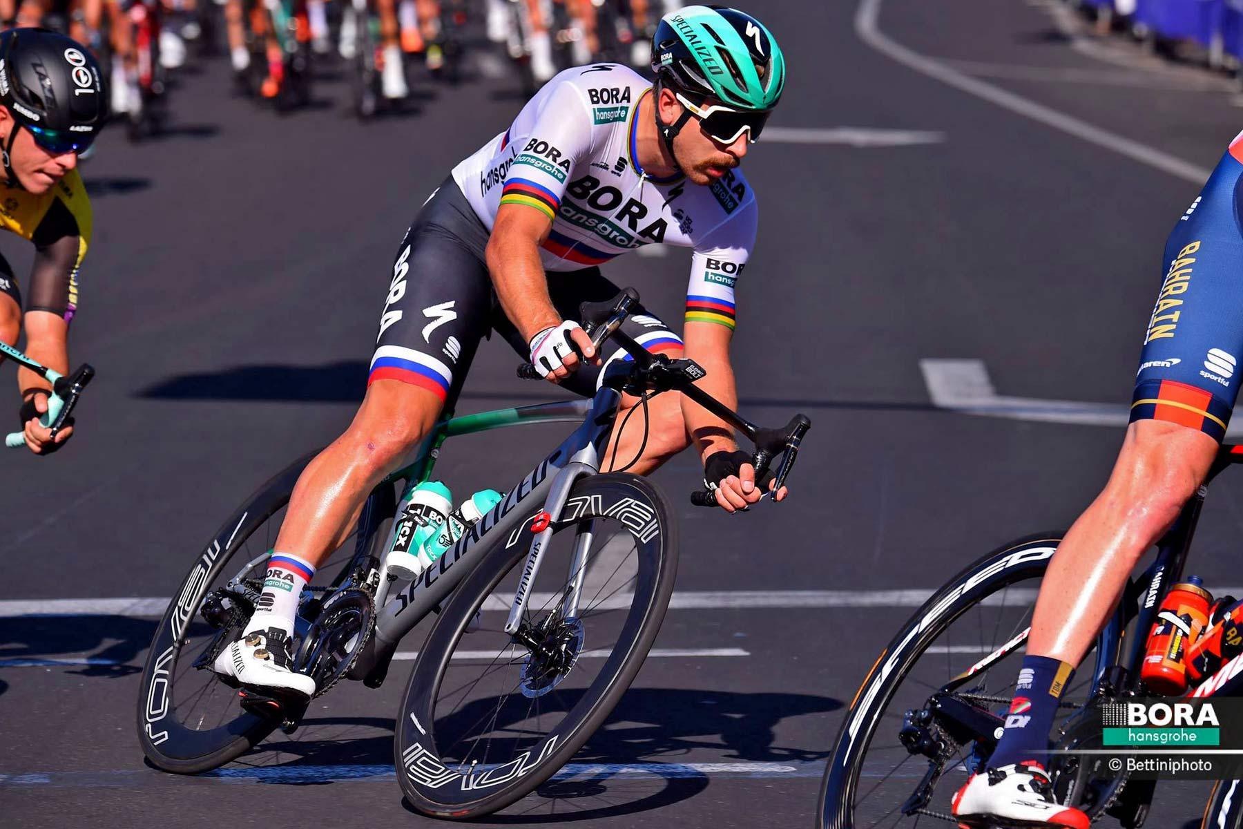 Specialized-Allez-Sprint-Disc_BORA-edition_affordable-stiff-aluminum-aero-disc-brake-road-race-bike_Peter-Sagan-Down-Under-Classic-crit_courtesy-Bora-hansgrohe_photo-by-Bettiniphoto.jpg