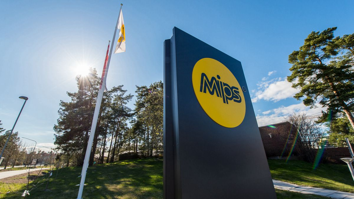 MIPS公司2019年销售额大涨