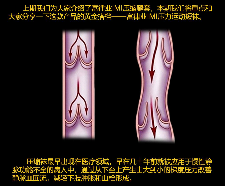 富律业短袜_03.jpg