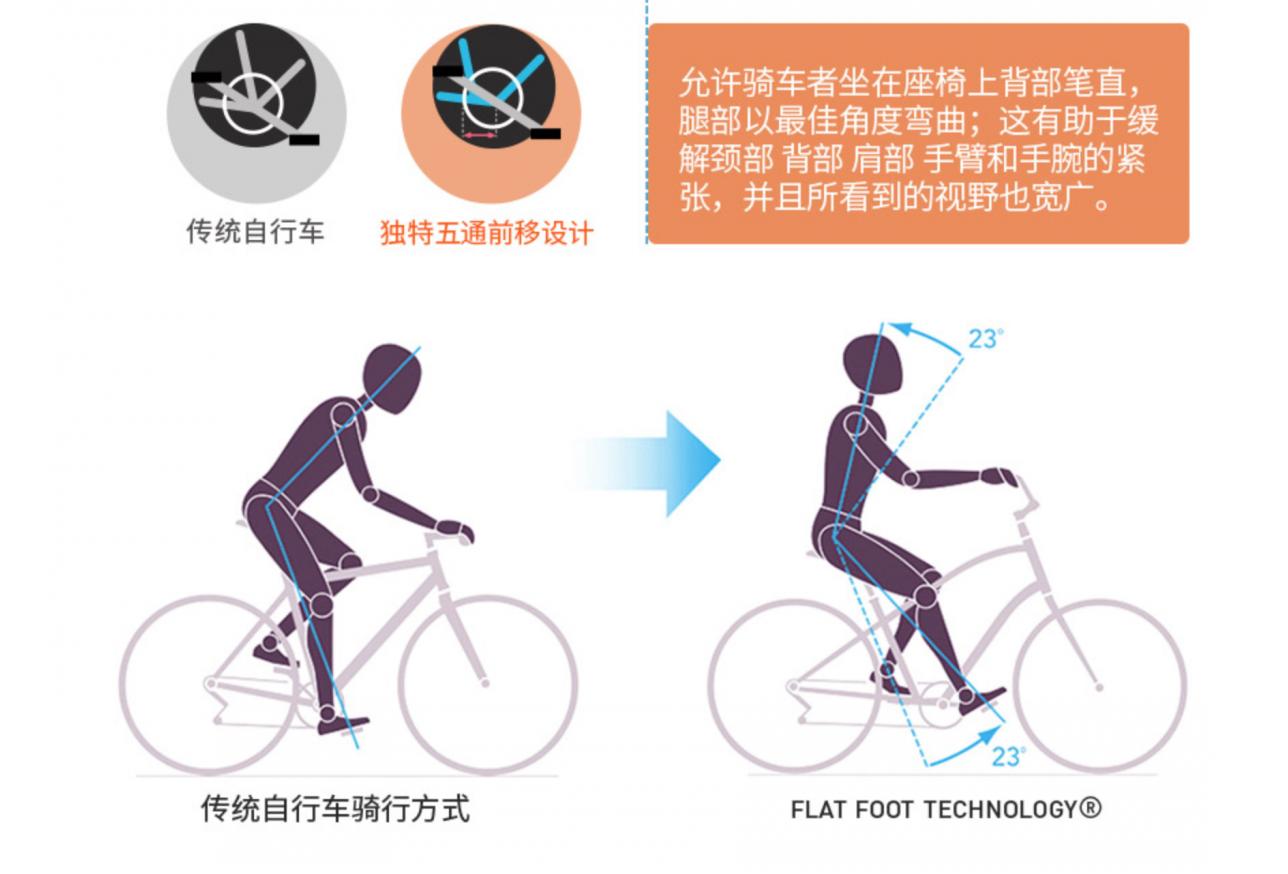 flat-2.jpg